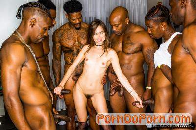 Riley Reid starring in Girlfriend Gangbang At The After Party - BlackedRaw (SD 480p)