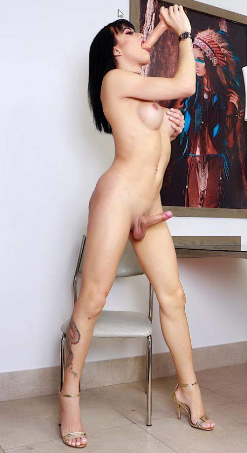 Nataly Sousa starring in Dildo For A Greedy Trans Ass - DreamTranny (FullHD 1080p)